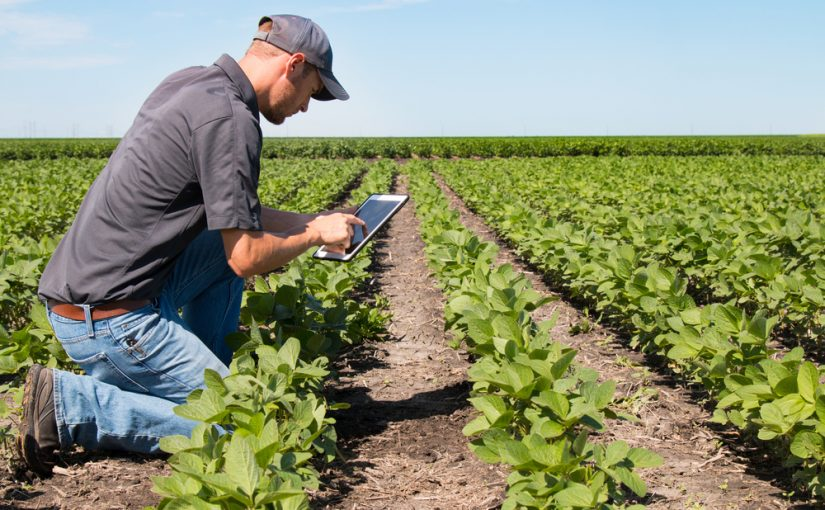 Autónomo agrario tiene que hacer declaraciones